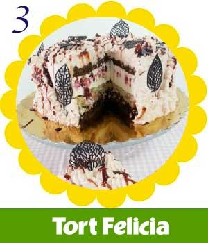 3-TortFelicia.jpg
