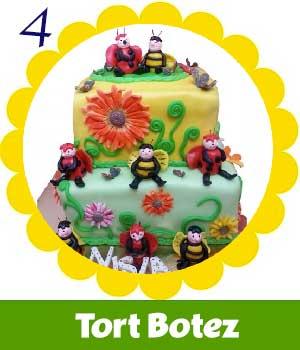 4-TortBotez.jpg