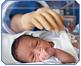 Prematurii: Esentele tari