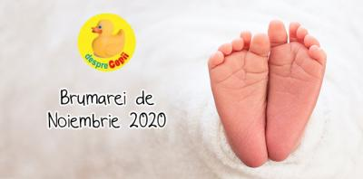 brumarei-2020-comunitate-mare.jpg