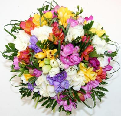 buchet-de-51-frezii-multicolore-2165546.jpg